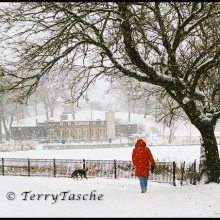 girl in a red coat and dog walk along Chicago's North Pond in the snow